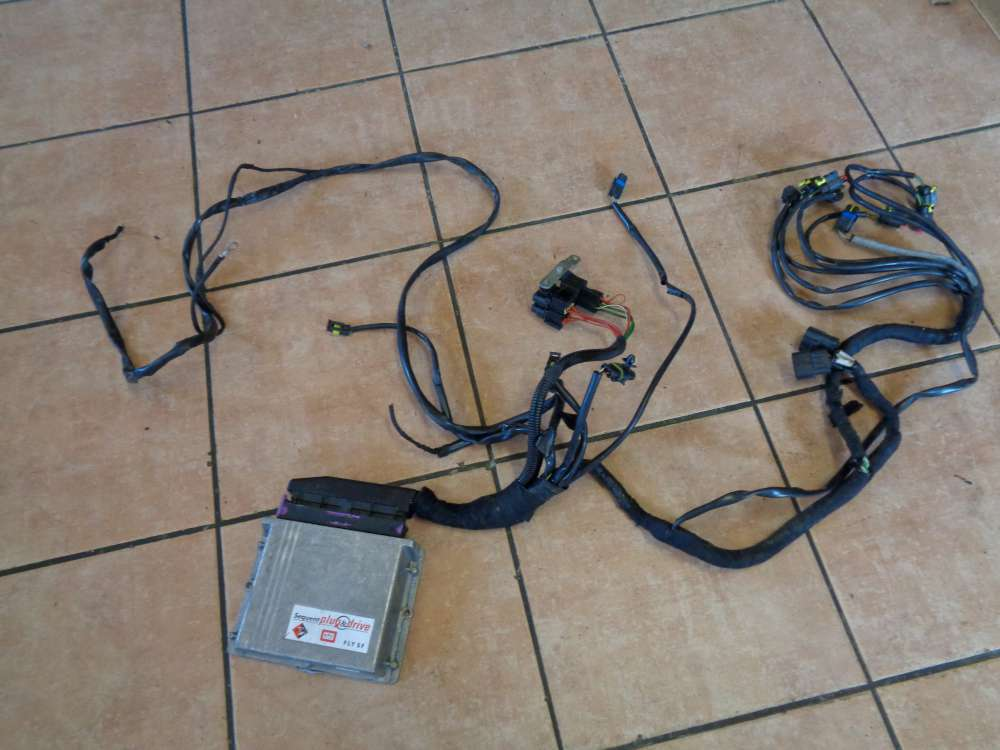 BRC Steuergerät LPG Modul Gasanlage mit Kabel FLY SF 67R011002 110R-001001 031001