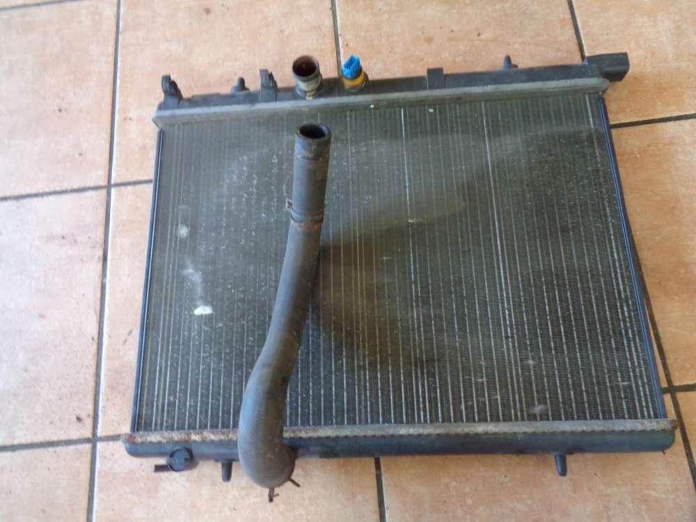Peugeot 206 Bj:2000 Wasserkühler 9625186580