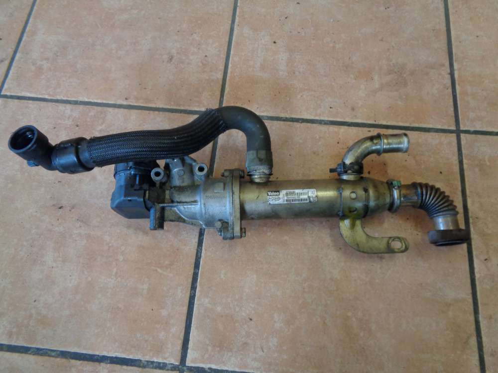 Peugeot 307 Ventil AGR Kühler 9645689680 9645689780