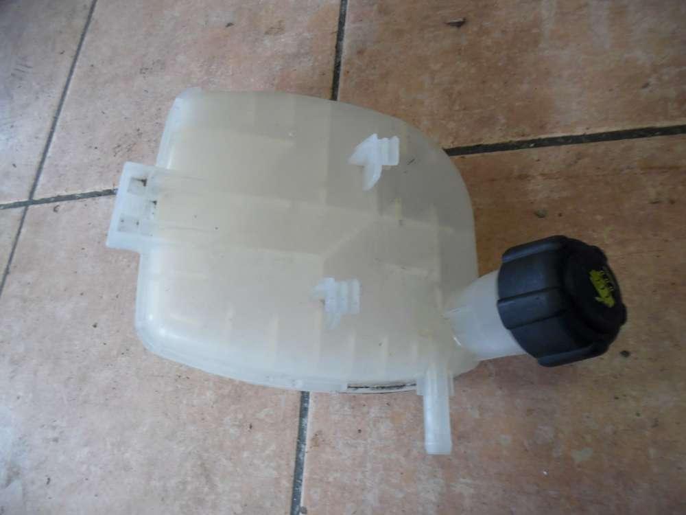 Renault Twingo II Ausgleichsbehälter Behälter 8200369313