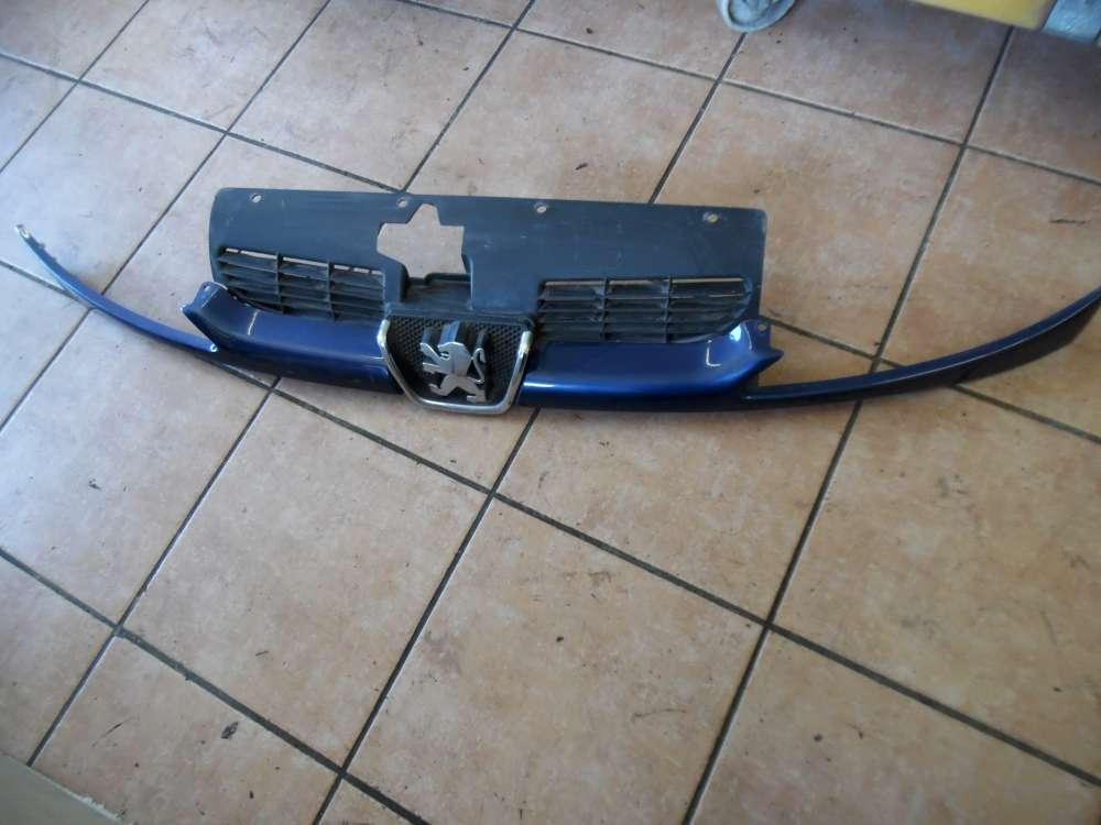 Peugeot 206 Frontgrill Kühlergrill Front Emblem Blau 9628691277 9628934280